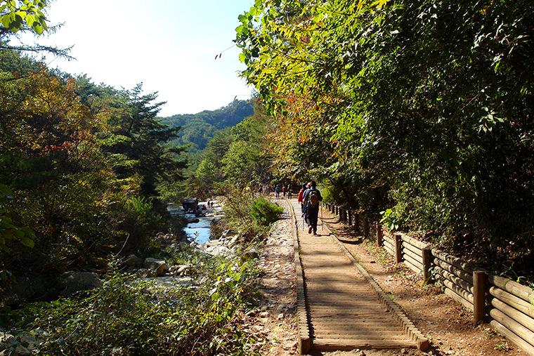 가을등산 등산데이트 명성산 등산코스 명성산 갈대축제