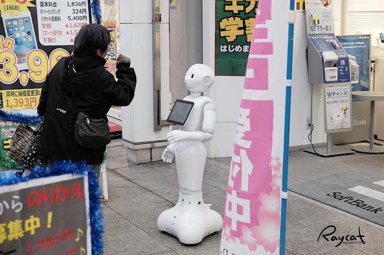 고치시 소프트뱅크 대리점의 호객 로봇