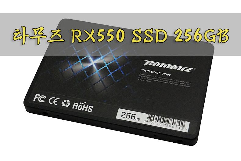 타무즈 SSD