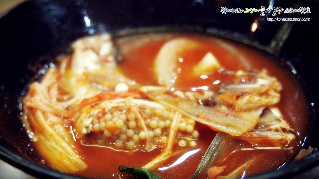 [대화역 맛집]겨울철 제철음식 도루묵찌개 맛집 속초물곰치에서 얼큰한 국물을 맛보세요~