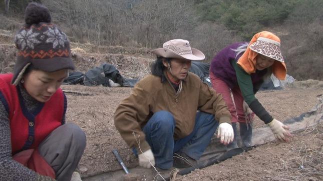 인간극장 용소골의 봄 참솔농원