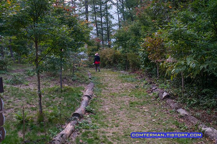 설매재 자연휴양림 숲속 산책로