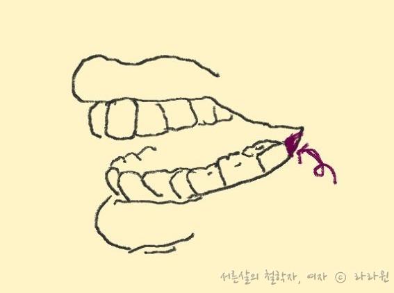 치아교정 양치질, 양치질, 양치질 방법, 치아교정 양치, 치아교정, 건강,