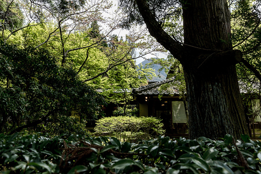 유후인, 일본 큐슈 여행