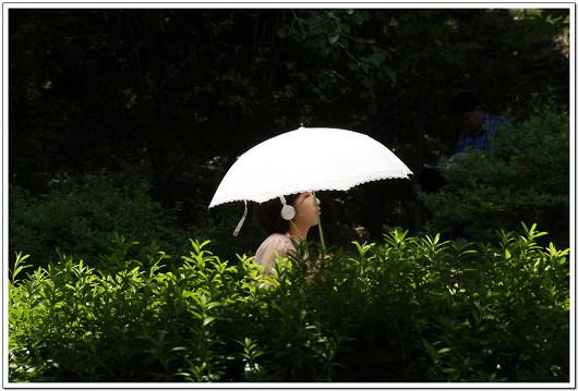 자외선-차단-양산