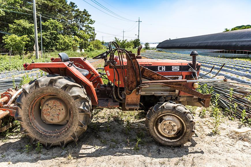 학일마을 모내기 체험, 도시가족 주말농부