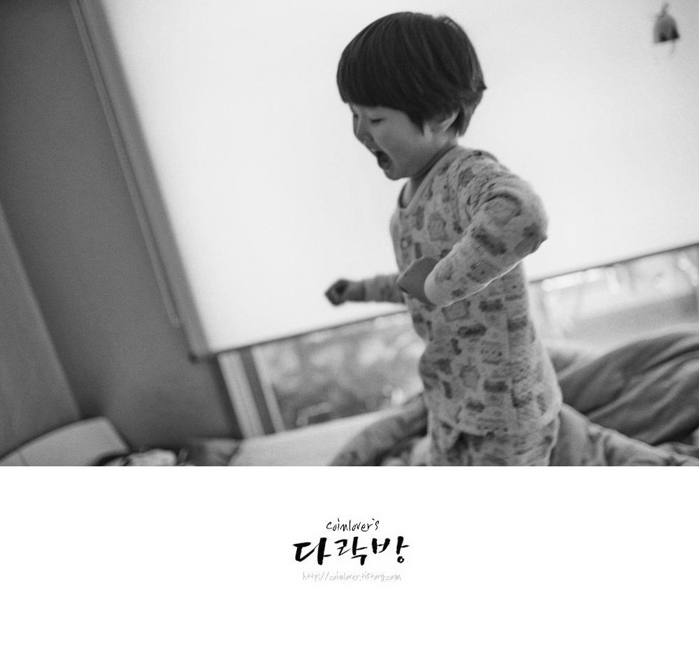육아 진진이의 나날들 - 아빠 사진사들이여 카메라의 AF에 대한 집착을 버려라.