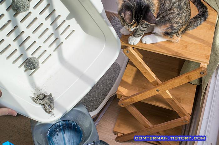 고양이 화장실 청소