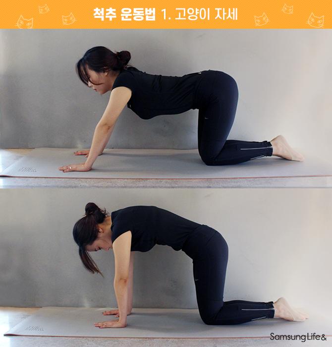 척추 운동법