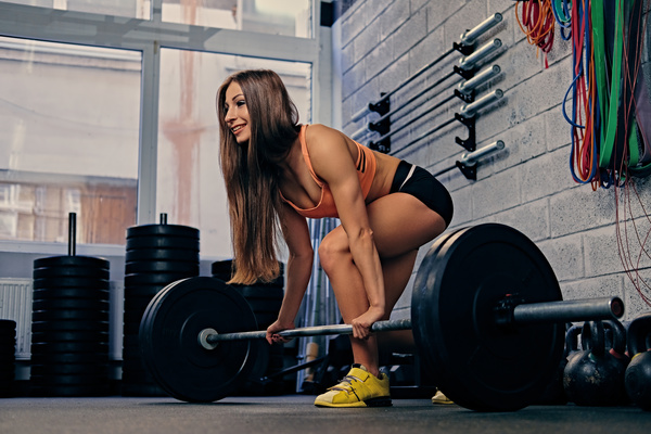 여자 체육관 리프팅 바벨 스톡사진 이미지(jpg) 모음