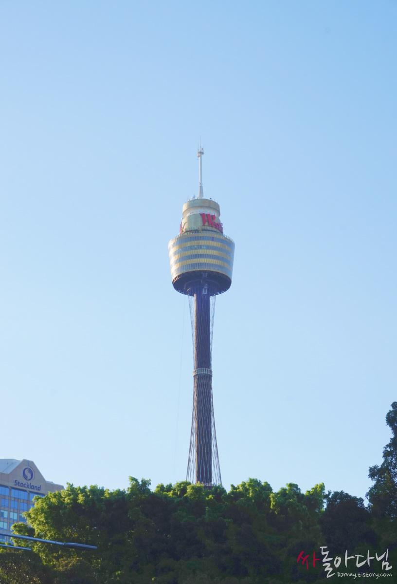 시드니 타워(Sydney Tower)