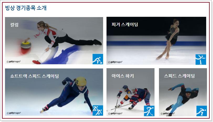 빙상 5개 종목(쇼트트랙 스피드 스케이팅, 스피트 스케이팅, 피켜 스케이팅, 아이스하키, 컬링)