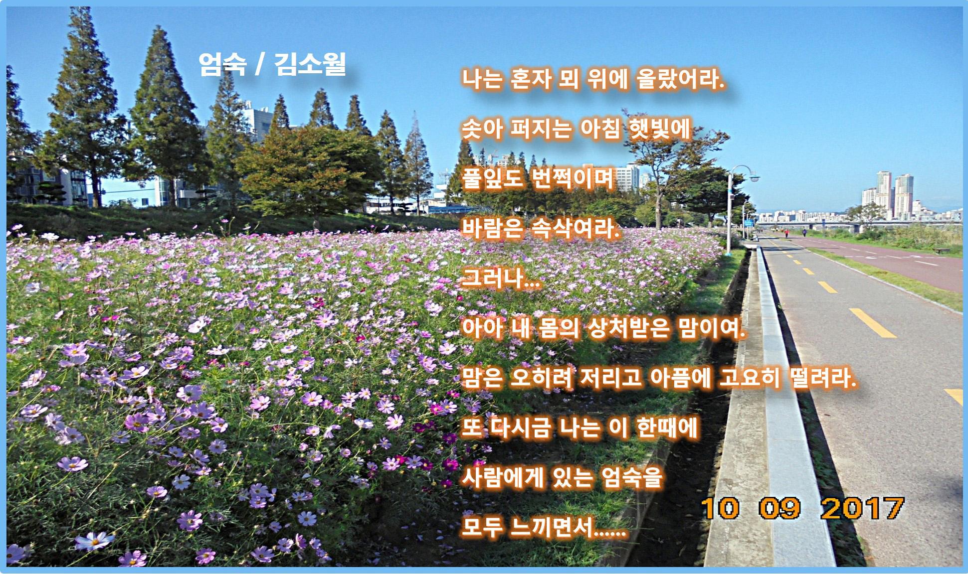 이 글은 파워포인트에서 만든 이미지입니다 엄숙 / 김소월