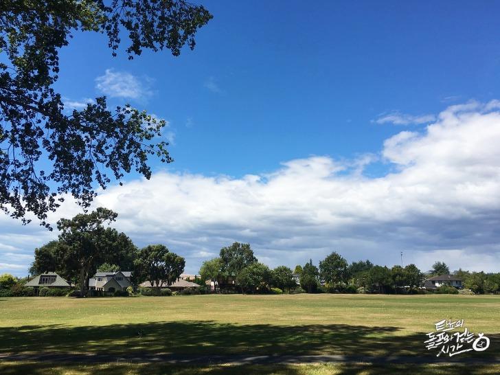 리카톤 뉴질랜드 크라이스트처치 공원 산책 운동 산보 경보 다이어트