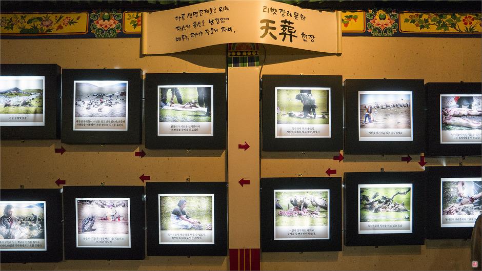 [티벳박물관] 천장<天葬>